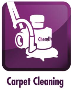 carpet cleaning fort wayne