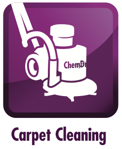 Carpet Cleaning Fort Wayne In Green Carpet Cleaning